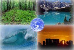 Пути решения экологических проблем claw ru Рефераты по  Пути решения экологических проблем