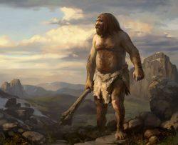 Теория эволюции